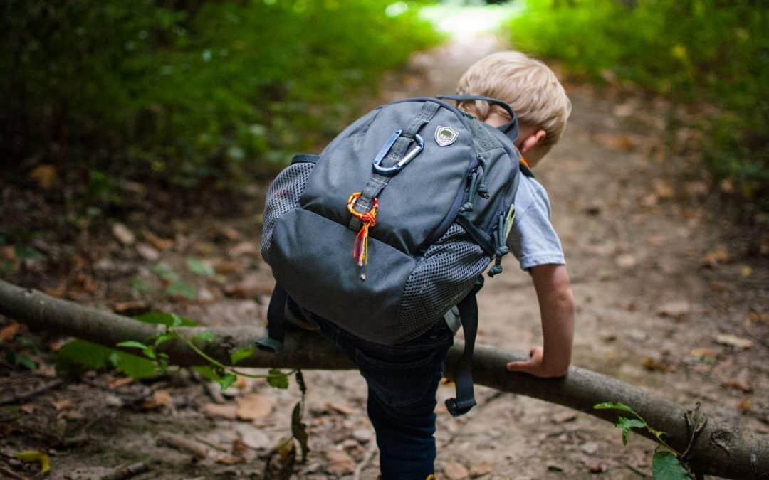 Review: Cub Ruck