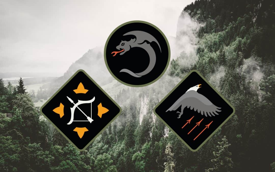 Risk, Adapt and Rise Patches