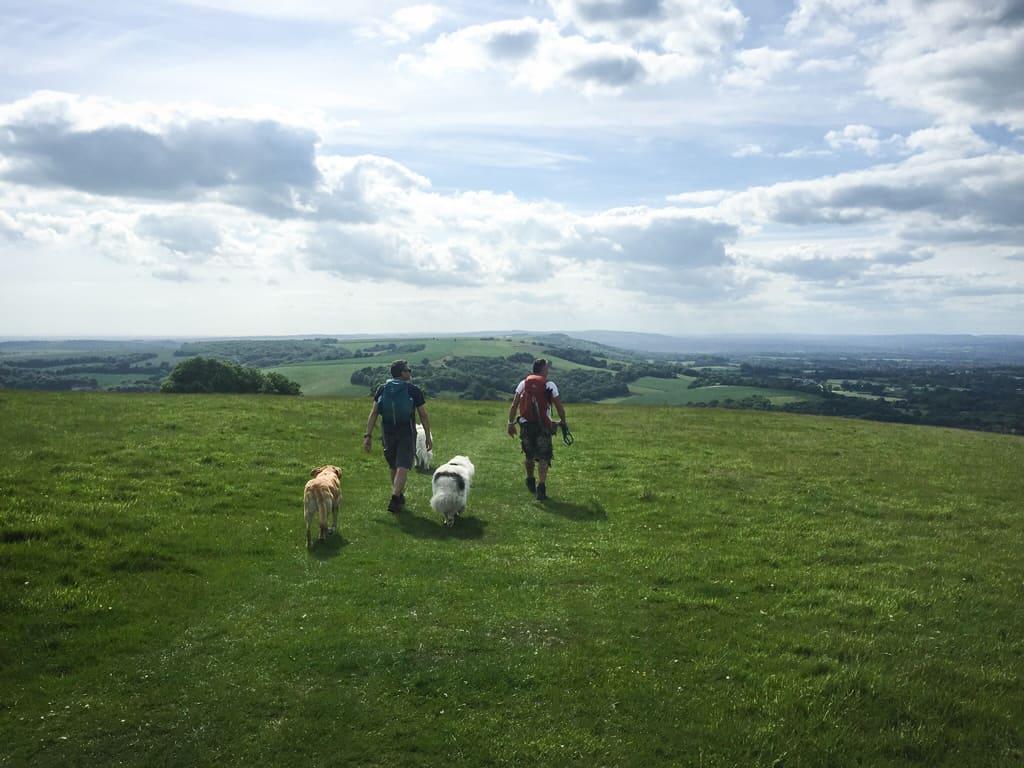 Field Report: Chanctonbury Ring ChanctonburyRing_003