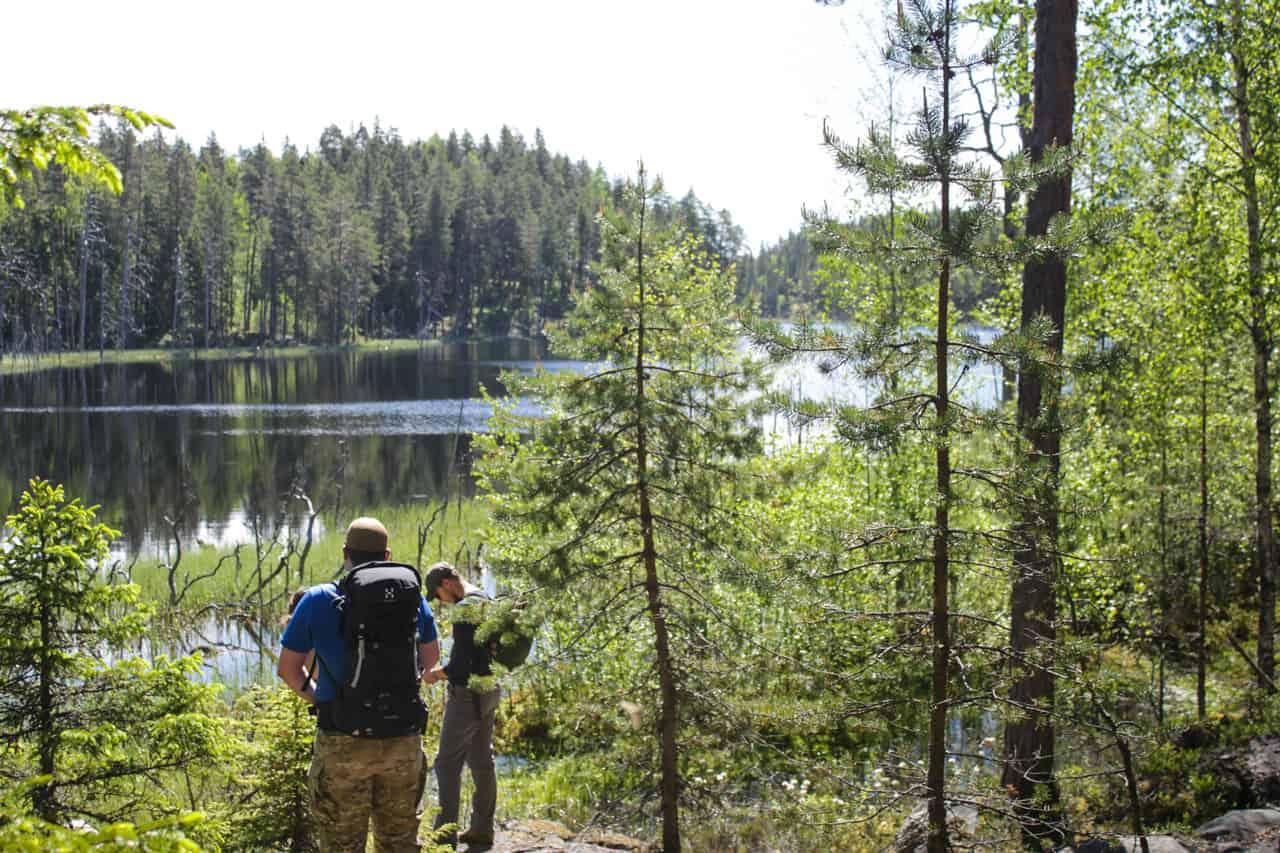 Field Report: Isojärvi National Park Finland_03