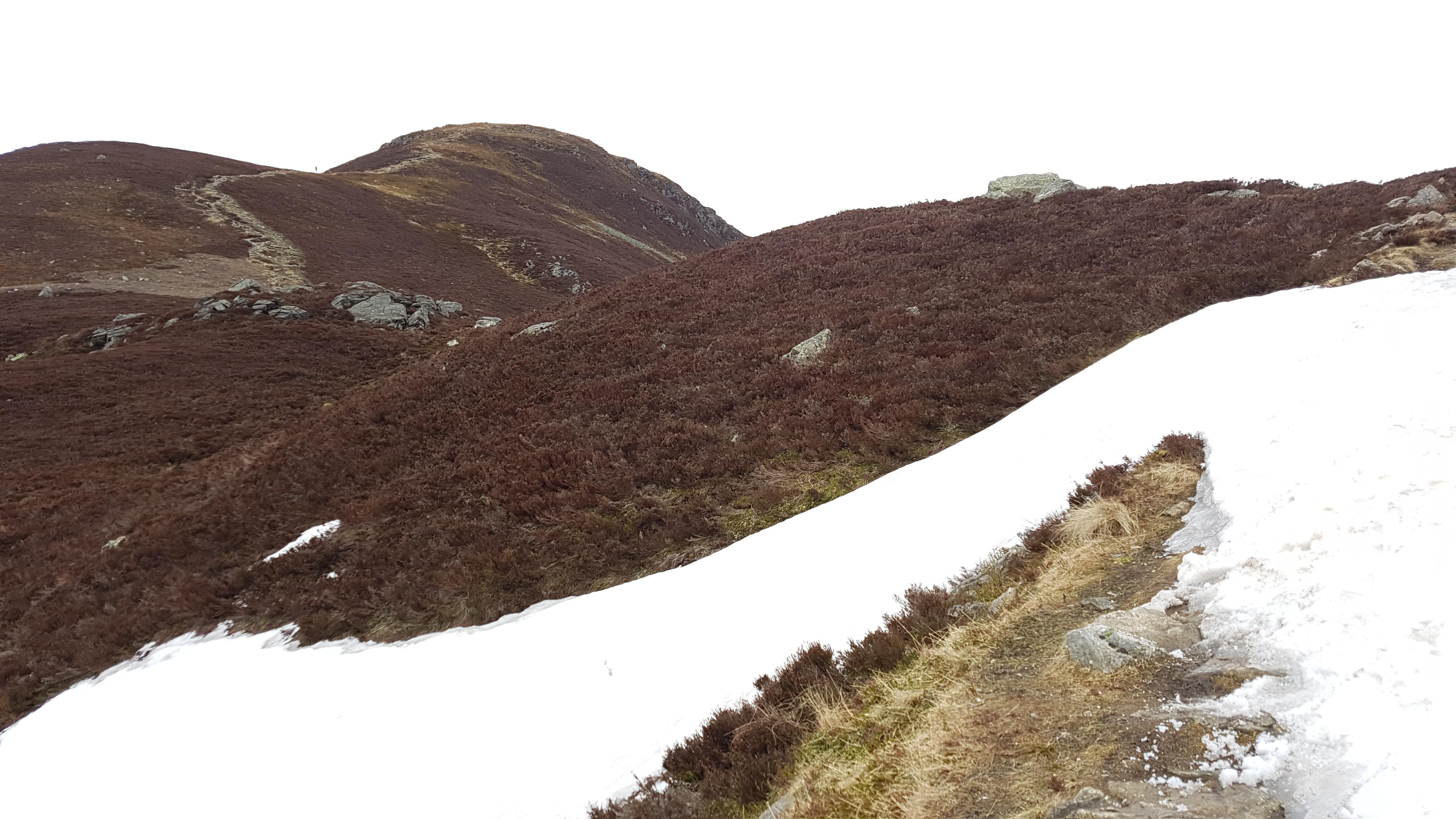 Field Report: Loch Brandy 20180428_132121